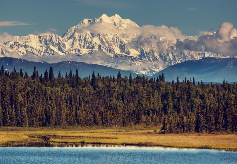 mountains in the Denali National Park