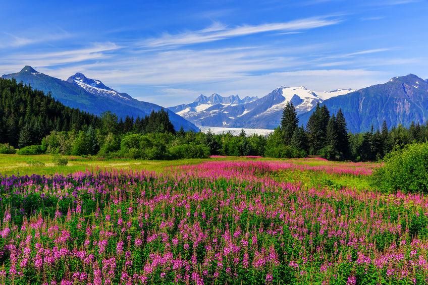 Alaskan Mountain range